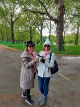 Buckingham Gardens